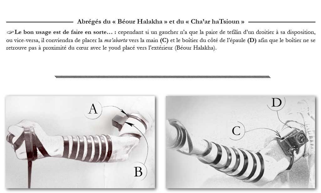Illustrations explicatives du Michna Beroura Traduit en Français